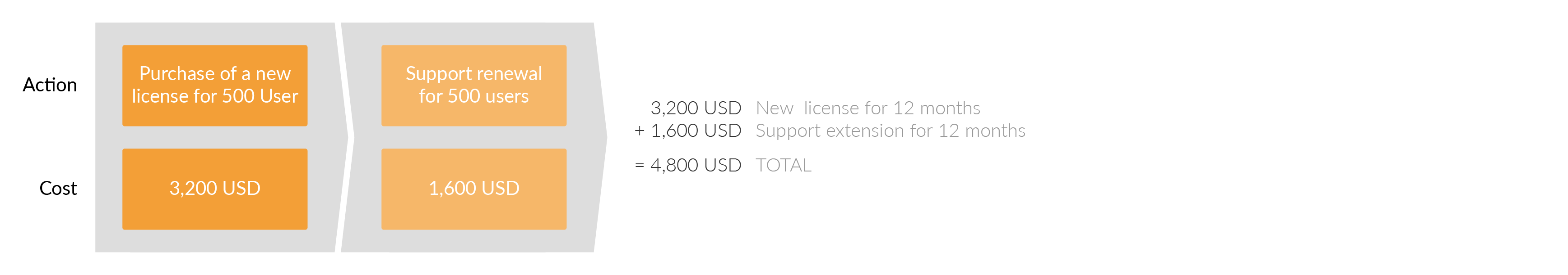 At the end of the first year you need to renew your support. The renewal price is half of the new license price.